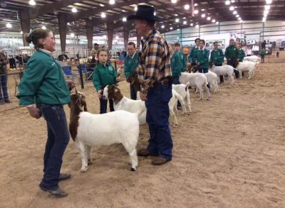 Osage students win in Osage County Livestock Show